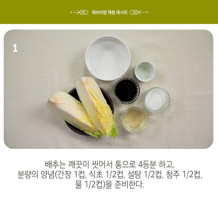 napa cabbage 11