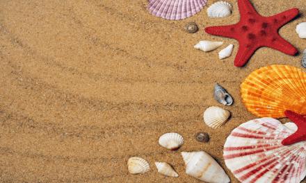 살면서 꼭 한번 가봐야 할 해변 5곳