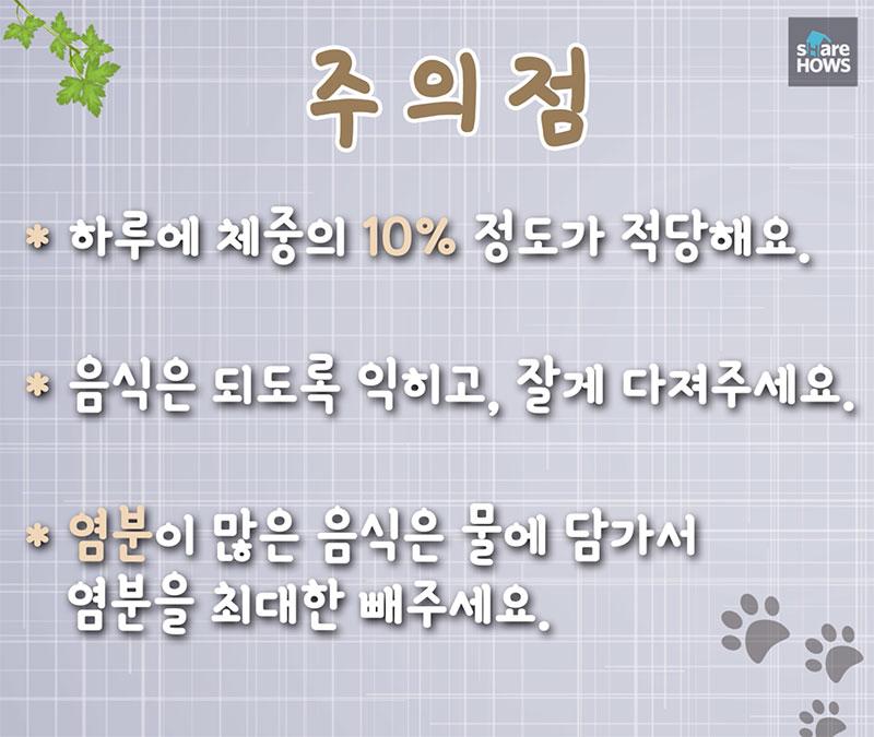 dog food 14