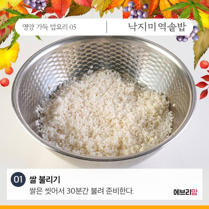 seaweed-octopus-rice-04