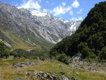 Birch hill creek, off the Mt Cook highway