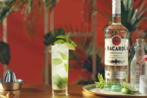 5 of the Best Bacardi Cocktails You Can Make To Impress