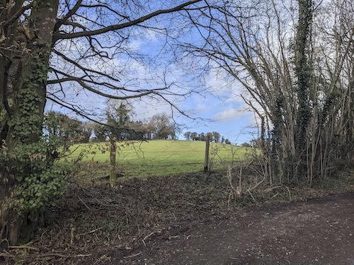 Chartridge golf course on the mud free Chiltern walk