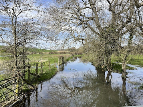 See the river overflowing on the Misbourne Valley loop