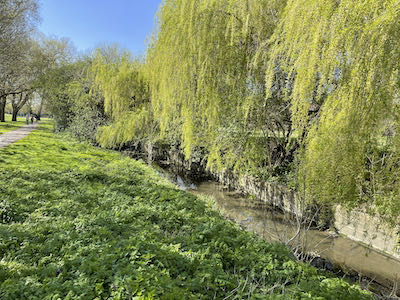 another glimpse of the Yeading Brook Trail