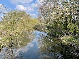 Watford to Aldenham Country loop walk via Colne River