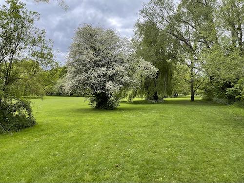 Swakeleys Park on the Celandine Route