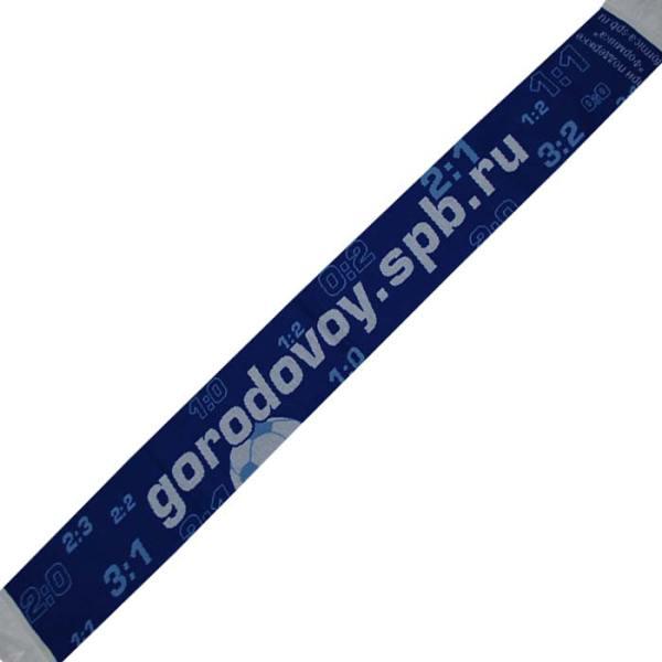 Gorodovoy2
