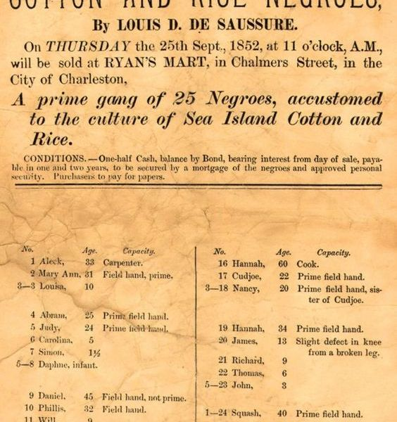 My Ancestors Were African Rice Farmers Who Were Enslaved to Produced Rice In America.