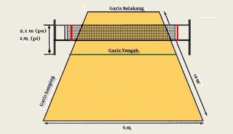 Ukuran Lapangan Bola Voli Putra Dan Putri Beserta Gambar Dan Contohnya