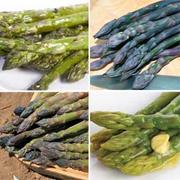 Spring Collection of Asparagus Crowns