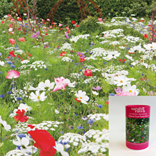 Ultimate Flower Meadow Mix - courtesy of Sarah Raven.