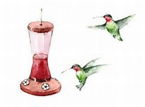 The Hummingbirds Have Left