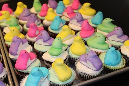 cupcakes-1378
