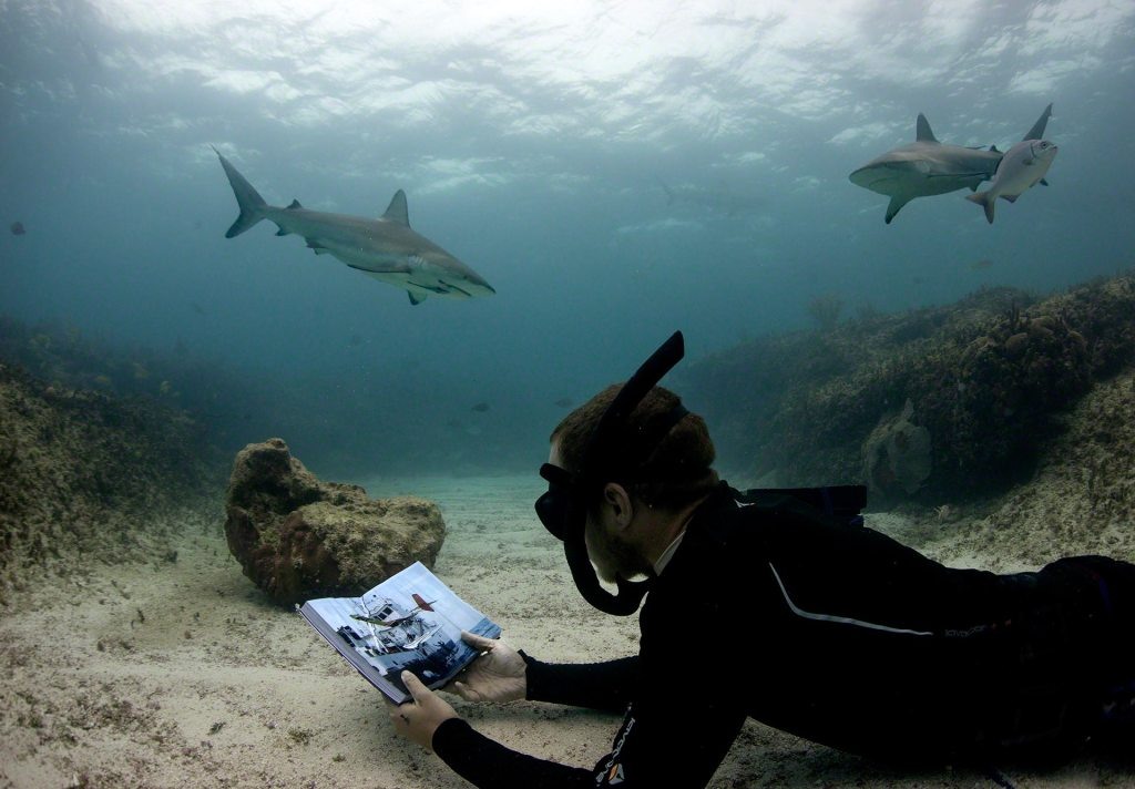 Underwater Chris reads whilst Caribbean Reef Sharks peer over his shoulder Photo by Charlotte Sams © Bimini Biological Field Station Foundation Copyright 2016