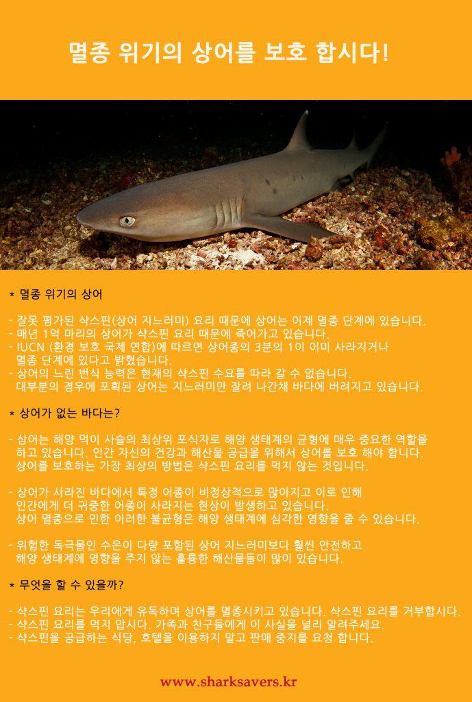 멸종 위기의 상어를 보호 합시다! http://sharksavers.kr/