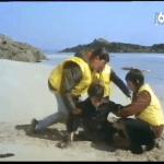 Le mystère de l'île aux moines