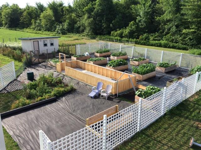 The kitchen garden under construction