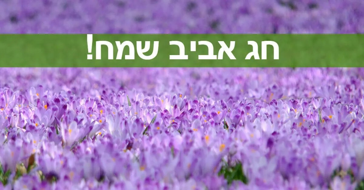 מתנה ברכה לחג האביב תמונת נושא - 4