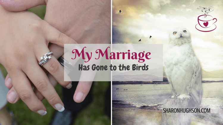 Marriage_Birds