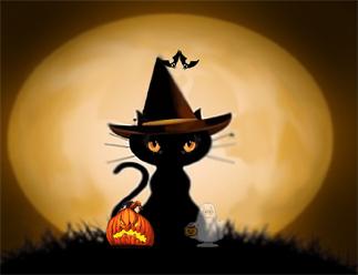 black-cat-halloween2