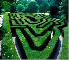 Hampton House maze