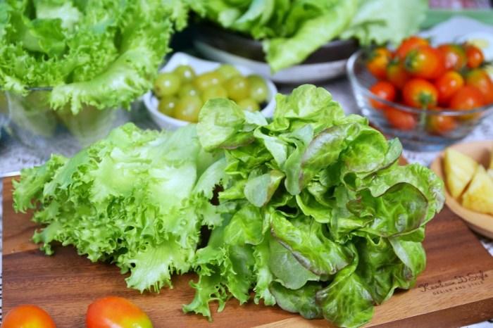 NICE GREEn美蔬菜 只需洗手不需洗菜 即食生菜清甜鮮嫩 適合溫沙拉、綠拿鐵