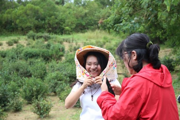 來墾丁這麼玩就對了!採港口茶 黑豆腐DIY 漫步白榕園 港口村生態旅遊好精彩