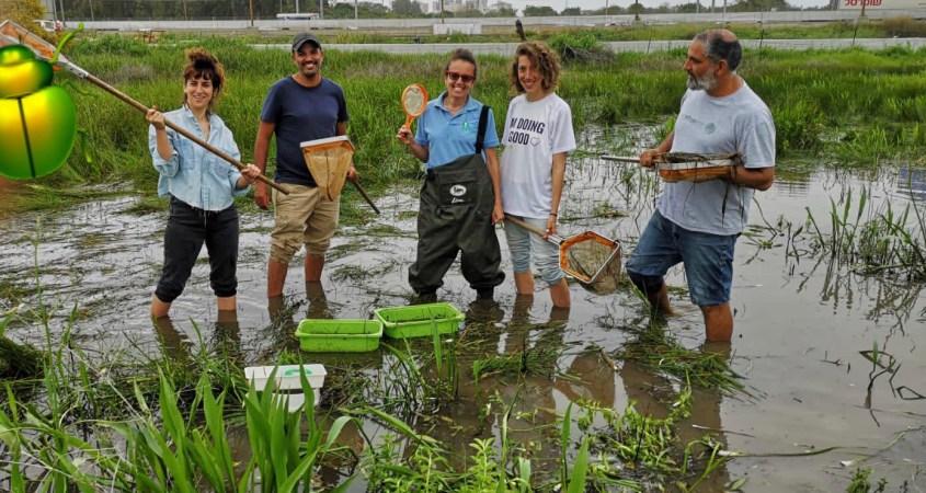 העברת דגים ובעלי חיים מבריכת חורף בנווה גן רמהש למקום אחר בשל בנייה עתידית