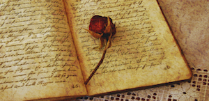 diary with rose copy