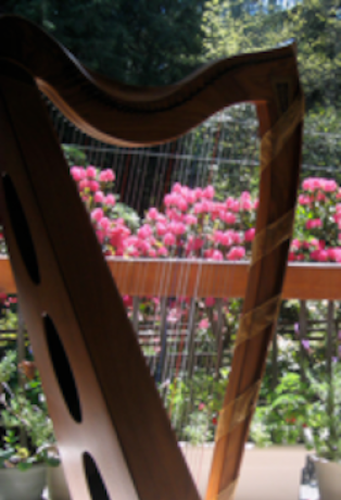 harp on the deck