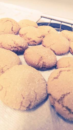 Butterscotch cookies, one of our many baking adventures.