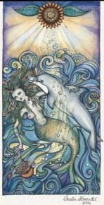 Mermaid Dolphin