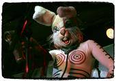 I was a guest Gram Rabbit bunny on stage at Pappy & Harriet's 2007