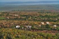 Trinidad farm