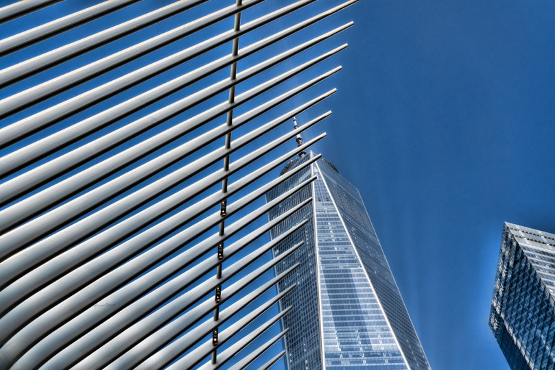 Ground Zero by Sharon Popek
