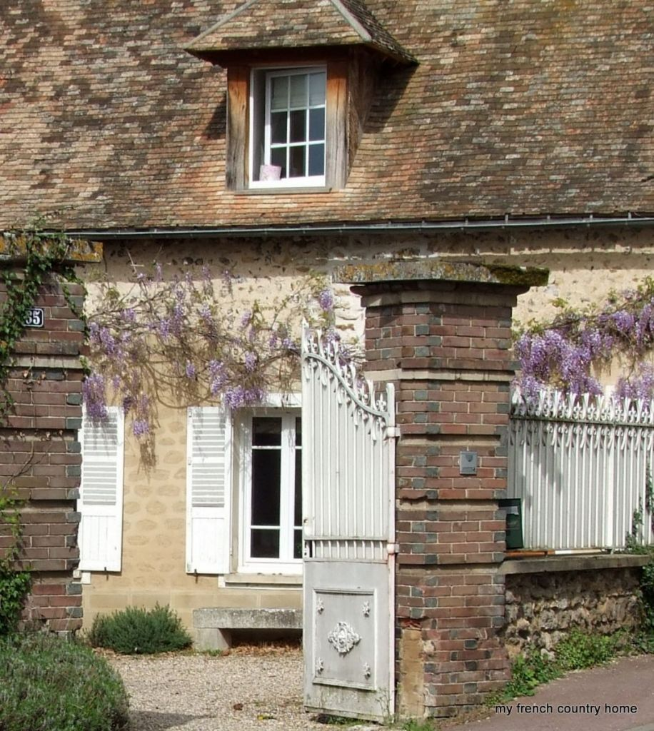 Wisteria Over French Gates