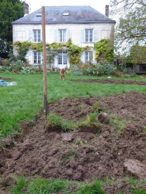 digging the parterre at my french country home