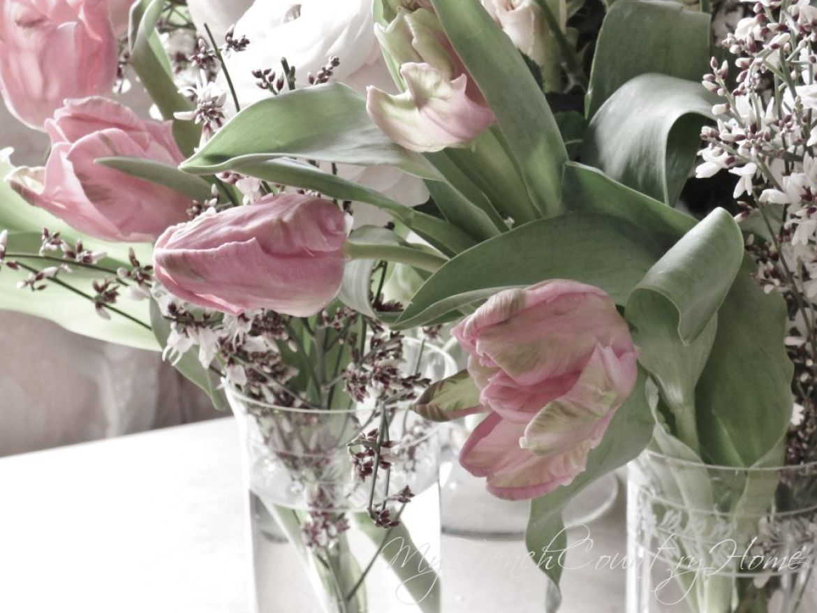 tulips and raununculas, spring is on its way!