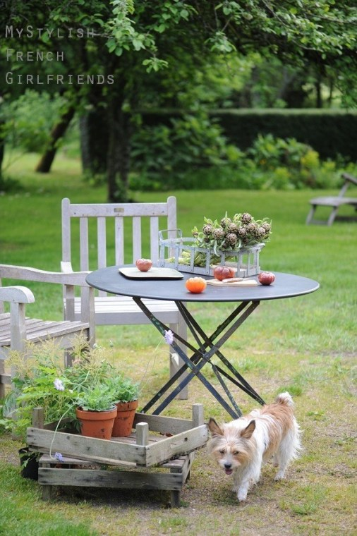 garden table with vegetables and dog
