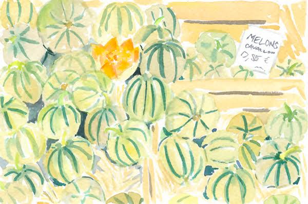 watercolour melons