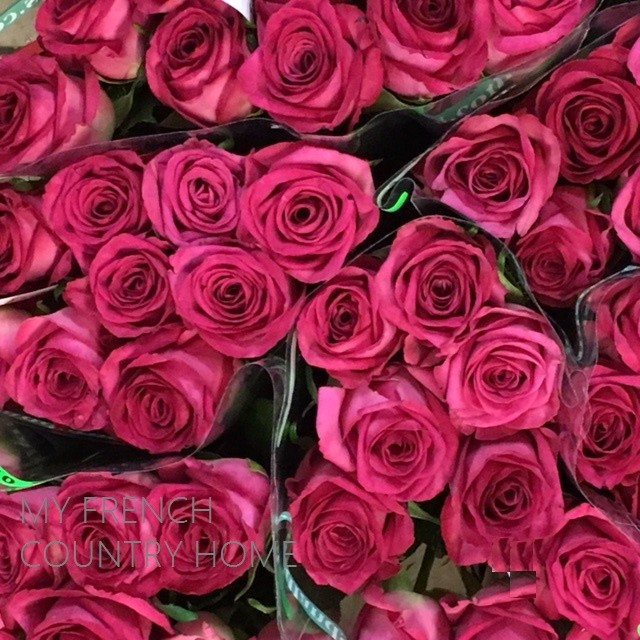 red roses for sale