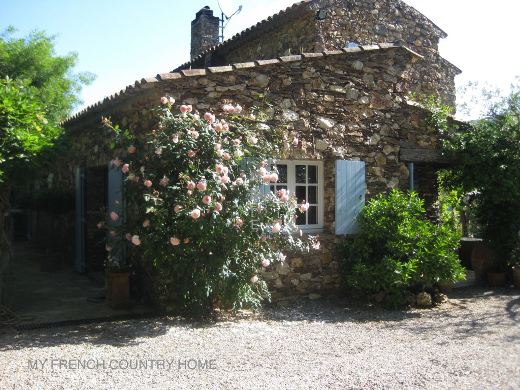 roses in bloom outside house in south of france