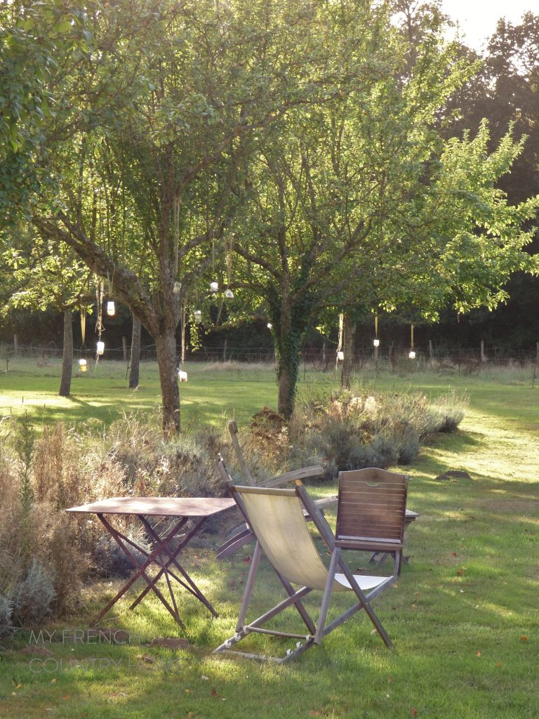 end of summer day in garden