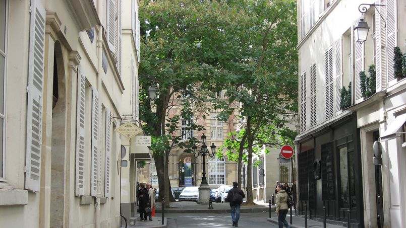 road leading from rue jacob to place fustenberg in paris