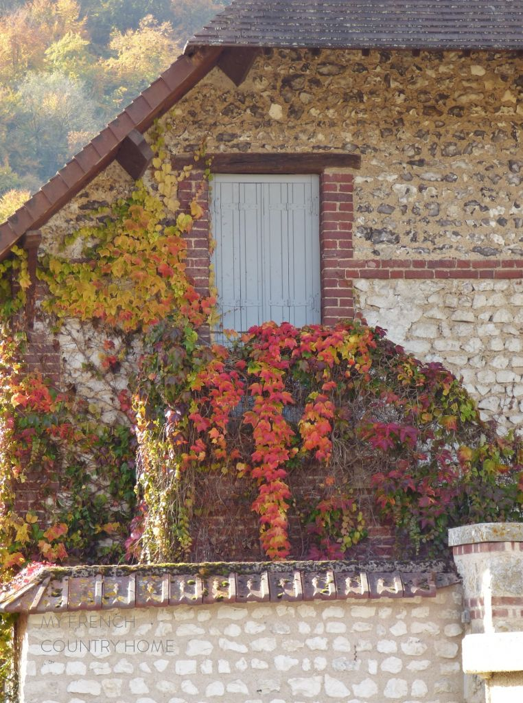 door with red virginia creeper
