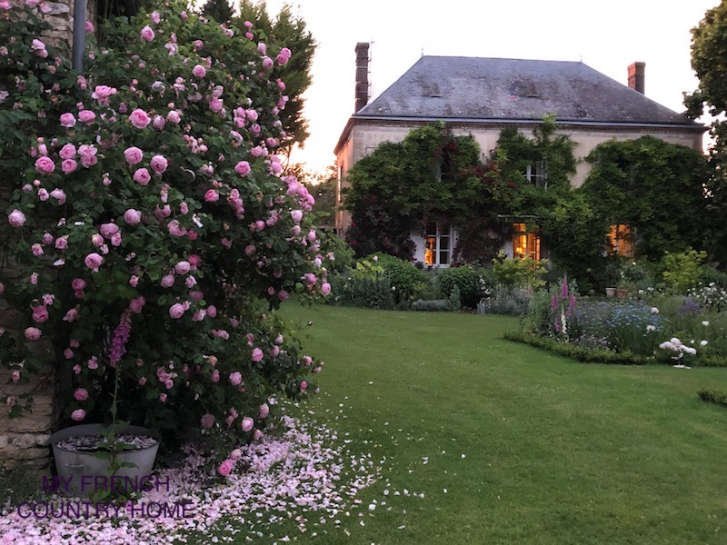 home at dusk with roses in the garden