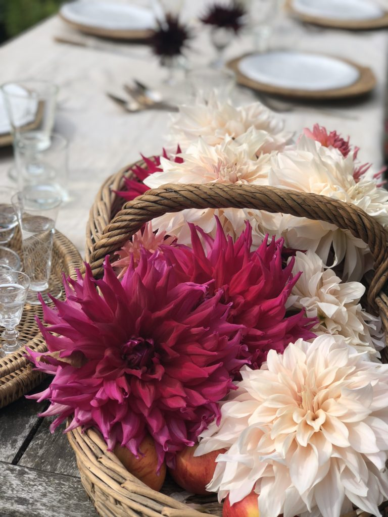 dahlias on table