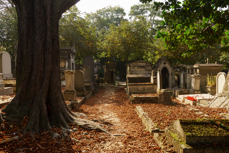 autumn leaves in pere lachaise cemetary