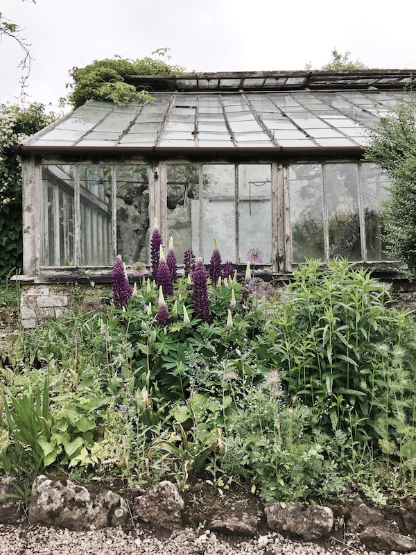 old glass greenhouse with flowers and rock wall